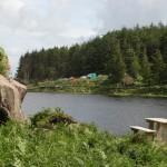 Glanteenassig <br>Forest Park