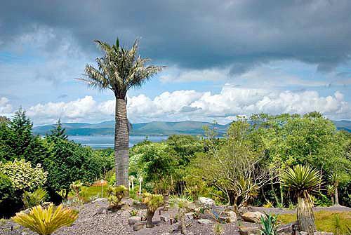 Kells Bay Gardens