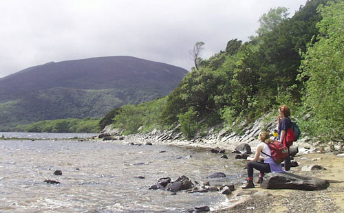 Kerry Gems Muckross Lake Loop walk is a moderate scenic stroll near